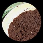 carousel-fertilizzanti