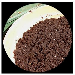 Fertilizzanti e terricci