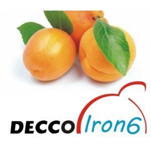 DeccoIron6